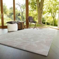 Carpet moderno dafne sitap 662-j